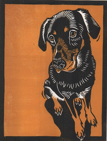 a reduction linocut of a Labrador/Rottweiler mixed breeddog  by Leslie Moore of PenPets