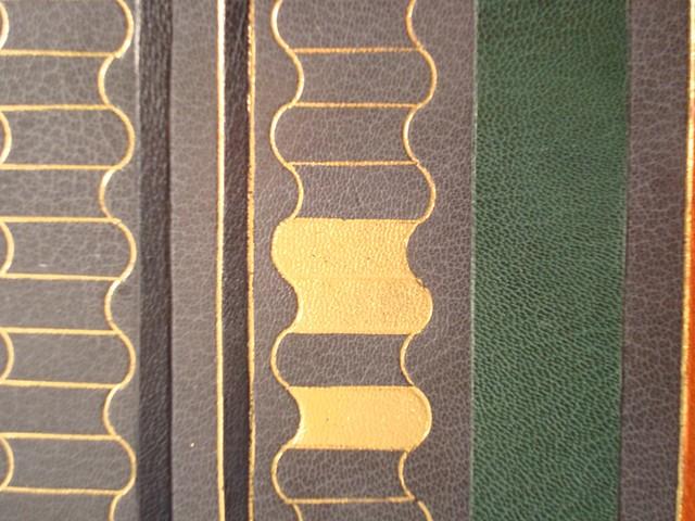 Dirck de Bray fine binding (detail)