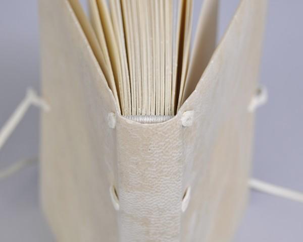 Limp Vellum detail