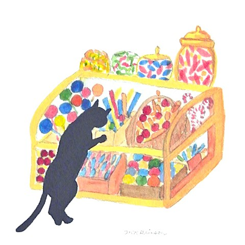 A black cat at the candy store stands on hind legs and stares into the candy case