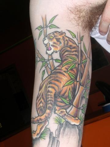 Malone tiger