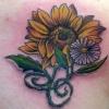 Sunflower/Daisy