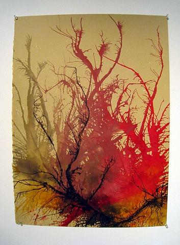 ink on paper, organic,