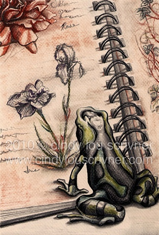 A graphite, ink and colored pencil rendering of a frog and a botanical sketchbook by Cindy Lou Scrivner