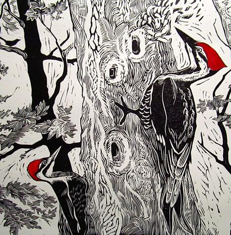 Siri Beckman, The Turtle Gallery, Deer Isle, Maine, Stonington, Print, Blue Hill, Bar Harbor, Ellsworth