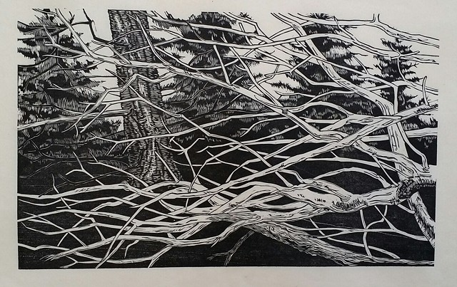 Gene Shaw, Woodcut Prints, The Turtle Gallery, Deer Isle, Great Cranberry Island, Art