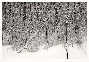 Vaino Kola print Deer Isle Suite #1 Turtle Gallery Maine