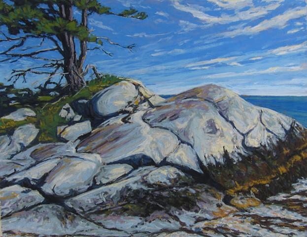Galen Davis, Maine Artist, Maine Landscape Artist, The Turtle Gallery, Deer Isle, Maine