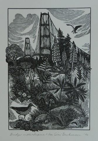 Siri Beckman, artist, wood engraving, Turtle Gallery, Deer Isle, Maine, Stonington, Blue Hill, Bar Harbor, Ellsworth