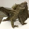 Iguana Dragon