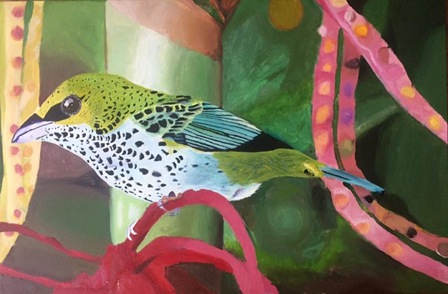 Speckled Tanager