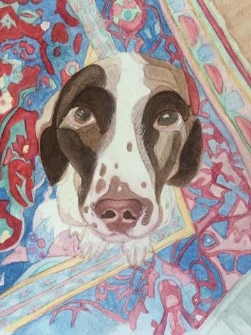 Cooper Among Patterns