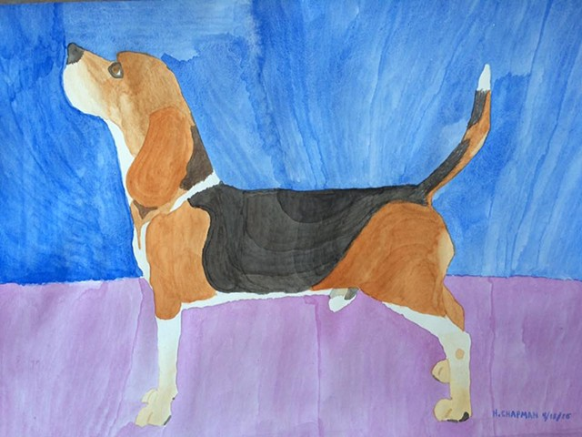 Beagle Standing Tall