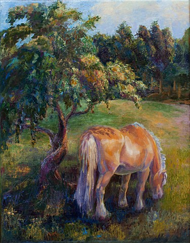 Fjord horse in an orchard