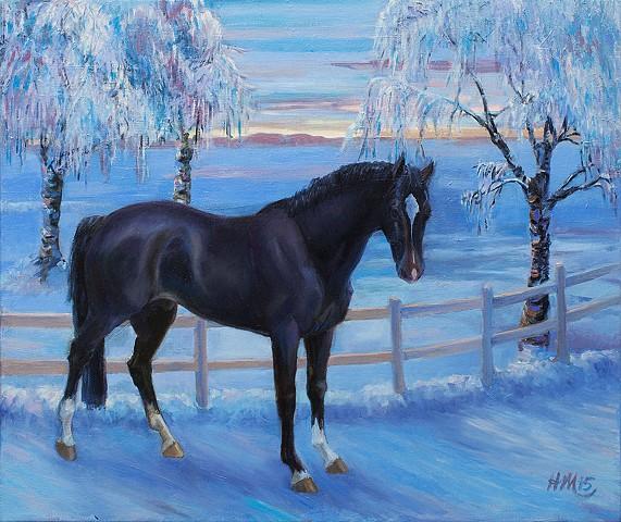 Dark horse in winter