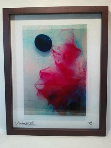 """Seashell"" Framed Transparency"