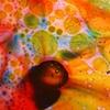 """Rainbow"" 2009"