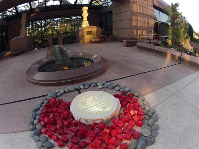 Wish Dallas Aurora 2011