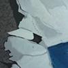 snow prints & blue shadow
