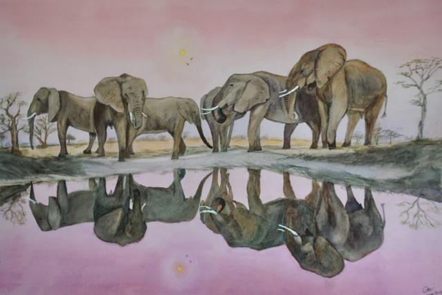 Tsavo Elephants at Dusk