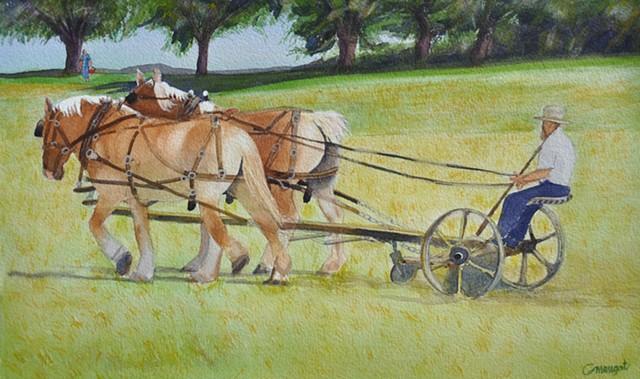 Amish Lunch-Break