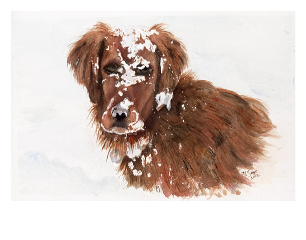 SADIE IN THE SNOW   NFS