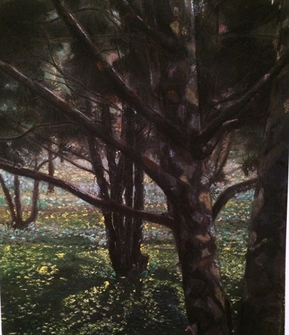 The Pine Grove