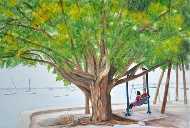 Sarasota Dreaming