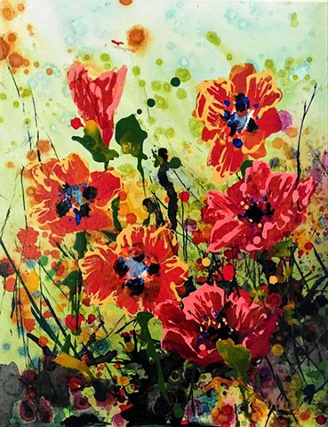 poppies flowers of spring green bloom cool day  laura gammons #lauragammonsstudios laura gammons @lauragammons #camplaura #lauragammons