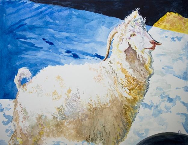 Dan Fionte Wolfgang Amadeus Angora Keldaby Shelburne Falls Massachusetts Watercolor