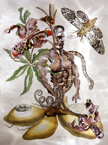 Dominique Paul, Merian, Insects of Suriname, photography, Insects of Suriname, Maria Sibylla Merian, collage, male body as object, biotech, genetic engineering