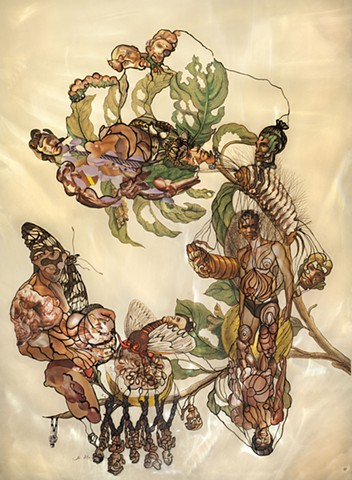 Merian, collage, Dominique Paul, muscle, male body, pregnant, genetic, insects, botanical,
