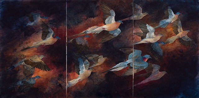 passenger pigeon, birds extinct, painting watercolor