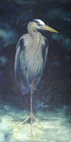 Night Sentry (Great Blue Heron)