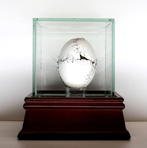 Mixed media--eggshell with sutures in glass box
