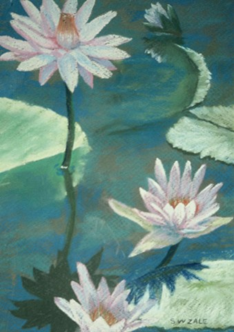 Three Pink  Waterlilies - close-up - with Reflections.  Main colors blues & greens.