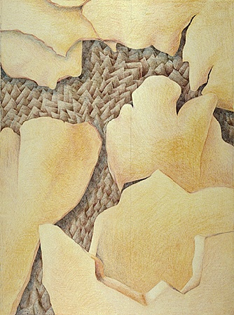 Abstract layers, browns, yellows, colored pencil  Prismacolor abstract drawing.