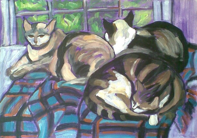 Cats on Plaid Blanket