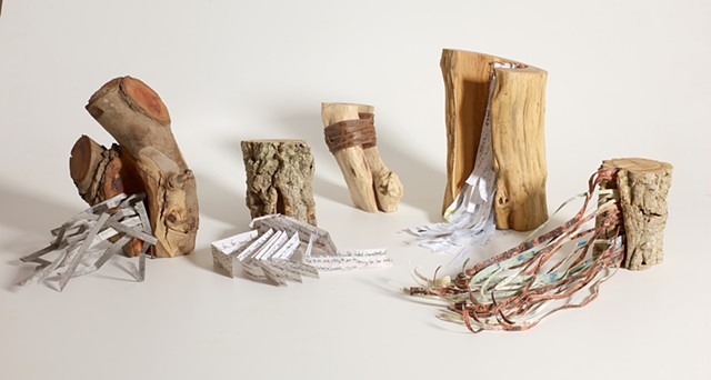Books as Objects, Lin Lisberger wood sculpture