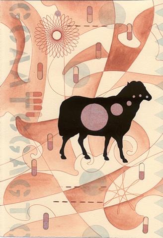 Pill Sheep
