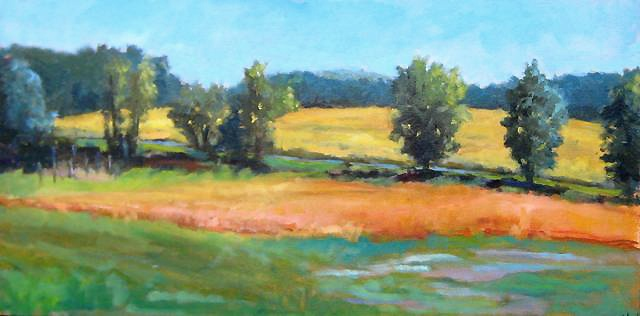 shelley lowenstein plein air oil painting Butlers Orchard Maryland field landscape  meadow