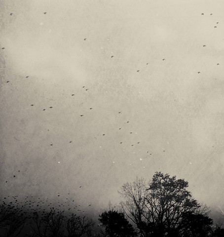 winter souless