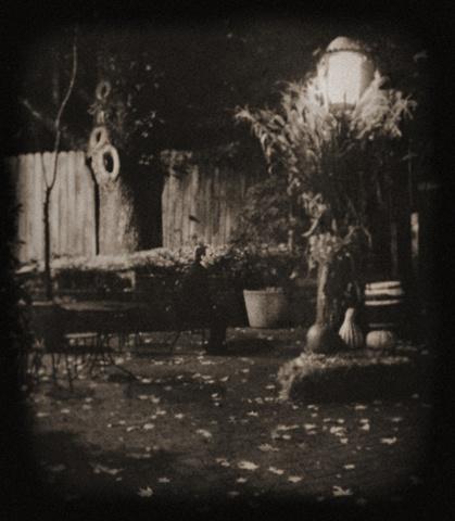 autumn, again