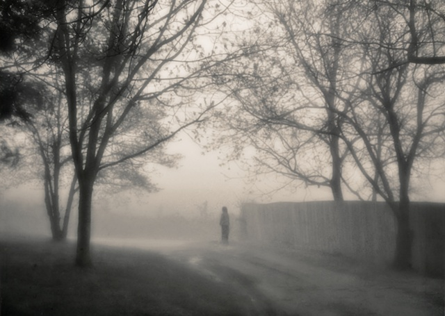 the boy and the fog