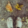 welcome, autumn