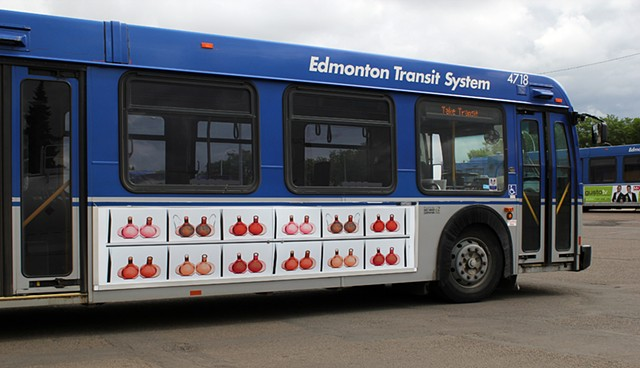 I Want You to Want Me Installation Edmonton Transit System