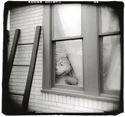 Holga photo of a stuffed bear Austin, Texas