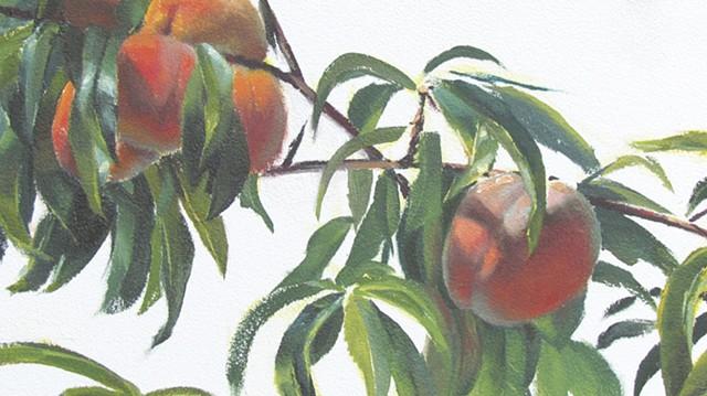 'Peaches' detail 4