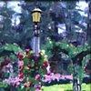 Washington Park Lampost