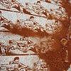 Dirt Carpet #4- Massive Manufacturing
